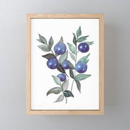 Watercolor Blueberries Framed Mini Art Print