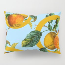 Vintage Fruit Pattern II Pillow Sham