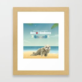 Jeffy The Harbor Seal Framed Art Print