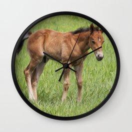 Little Colt Wall Clock