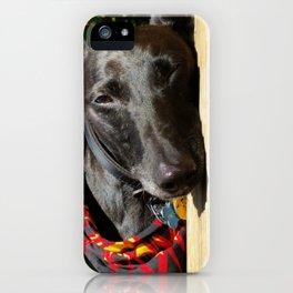 Lazy Lurcher iPhone Case