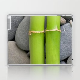 Green Bamboo Sticks on Pebble Laptop & iPad Skin