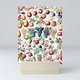Adolphe Millot - Fruits pour tous - French vintage poster Mini Art Print
