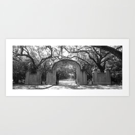 Entry to the Historic Wormsloe Plantation Site Art Print