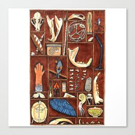 Curious Cabinet Canvas Print