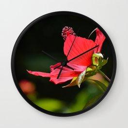 Beauty-5 Wall Clock