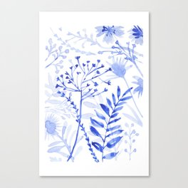 Chamomile Daisies, Eucalyptus, Fennel, Hypericum Floral Watercolor Painting by Tzechee Canvas Print