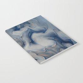 Transforma Notebook