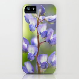 Yellowstone National Park - Silver Lupine iPhone Case