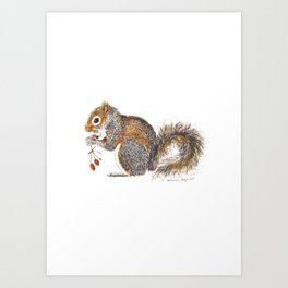 Berries Squirrel Art Print