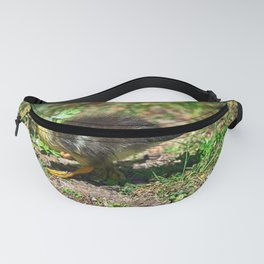 Lonely Duckling - Colorful Fanny Pack
