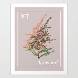 Provincial Flowers - Yukon Art Print