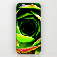 succulent iPhone & iPod Skins featuring Succulent by Derek Fleener
