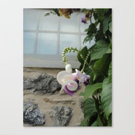 twisted. Canvas Print