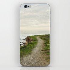 California Coast Trail iPhone & iPod Skin