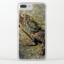 Little Creature Poses 2 Clear iPhone Case