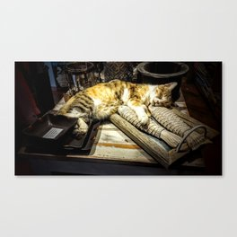 Dreaming of fish Canvas Print