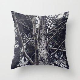 Grace Beneath The Pines II Throw Pillow