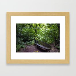 Wood Bench in the Middle of the Rainforest on the Mombacho Volcano in Nicaragua Framed Art Print