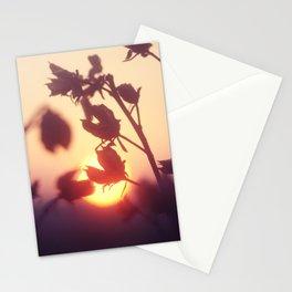Garden Sunset Stationery Cards