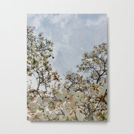blossoms of the sun Metal Print