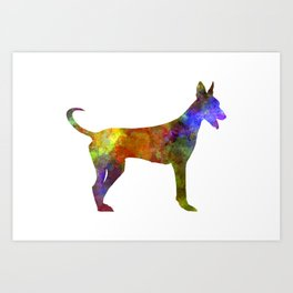 Canarian Warren Hound in watercolor Art Print