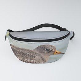 Sea Bird Fanny Pack