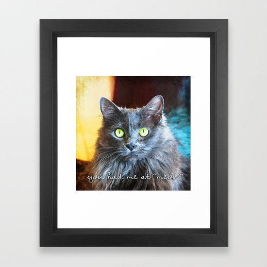 You Had Me At Meow Grey Cat Close Up Photo Framed Art Print By