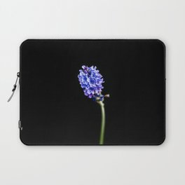 Lavandula pinnata Laptop Sleeve