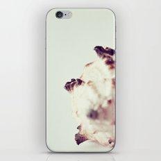 Listen to the Ocean iPhone & iPod Skin