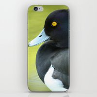 duck iPhone & iPod Skins featuring Duck by BlackNYX