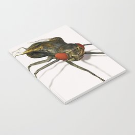 Fly Notebook