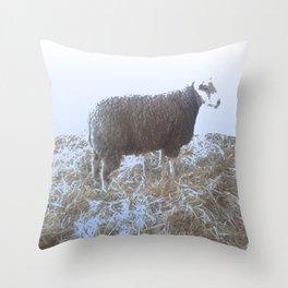 Solitude on straw Throw Pillow