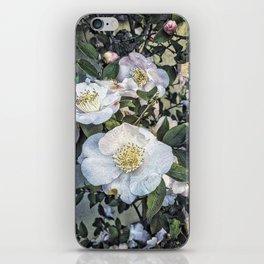 Camellias, Nara, Japan iPhone Skin