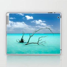 Driftwood in Lagoon Laptop & iPad Skin