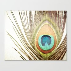 Peacock Feather Photography, Brown Teal Peacock Feathers Art Canvas Print