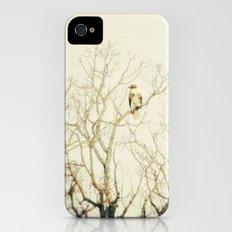 Hawkeye Slim Case iPhone (4, 4s)