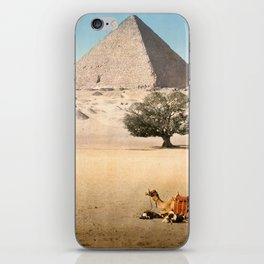Vintage Pyramid : Grand Pyramid Gizeh Egypt 1895 iPhone Skin