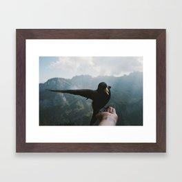 A wild Bird - landscape photography Framed Art Print