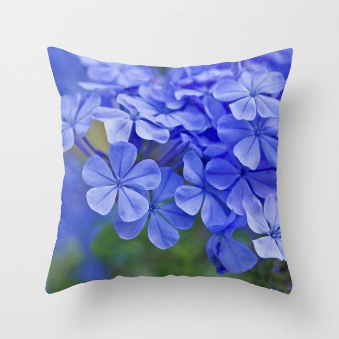 Summer garden blues - macro floral phtography Throw Pillow
