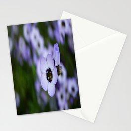 Soft Beauty Stationery Cards