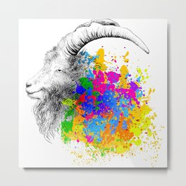 Mountain Goat, Ram portrait Metal Print