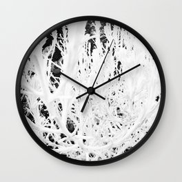 White coastal daisy bush Wall Clock
