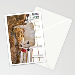 Cute Cow Stationery Cards