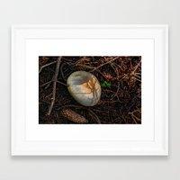 mushroom Framed Art Prints featuring Mushroom by Christia Caldwell Moody