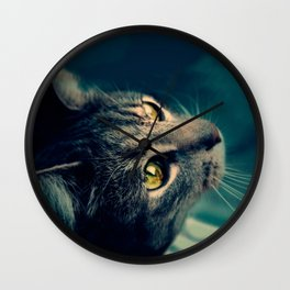 Vintage Yellow-Eyed Cat looking up Above Wall Clock