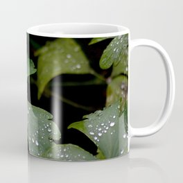 Aftermath of Rain Coffee Mug