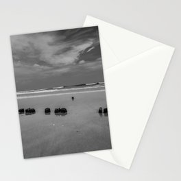 Exposed driftwood structure on Assateague Island (black and white) Stationery Cards