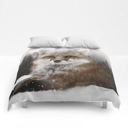 Fox Stare Comforters