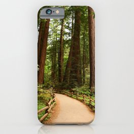 Walking Through The Muir Woods iPhone Case